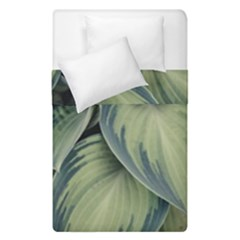 Closeup Photo Of Green Variegated Leaf Plants Duvet Cover Double Side (single Size) by Pakrebo