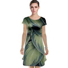 Closeup Photo Of Green Variegated Leaf Plants Cap Sleeve Nightdress