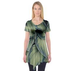 Closeup Photo Of Green Variegated Leaf Plants Short Sleeve Tunic  by Pakrebo