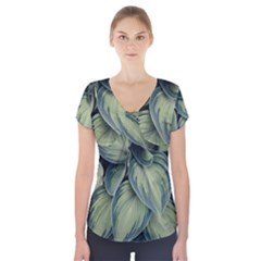 Closeup Photo Of Green Variegated Leaf Plants Short Sleeve Front Detail Top by Pakrebo