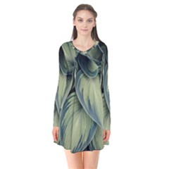 Closeup Photo Of Green Variegated Leaf Plants Long Sleeve V Neck Flare Dress by Pakrebo