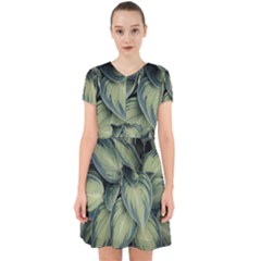 Closeup Photo Of Green Variegated Leaf Plants Adorable In Chiffon Dress