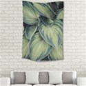 Closeup Photo Of Green Variegated Leaf Plants Small Tapestry View2