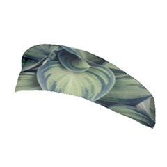 Closeup Photo Of Green Variegated Leaf Plants Stretchable Headband