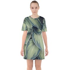 Closeup Photo Of Green Variegated Leaf Plants Sixties Short Sleeve Mini Dress by Pakrebo