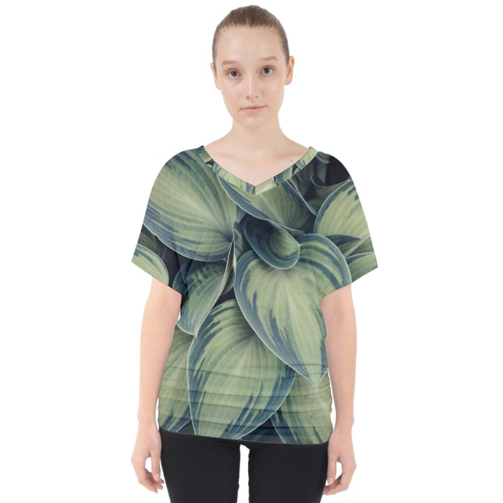 Closeup Photo Of Green Variegated Leaf Plants V-Neck Dolman Drape Top