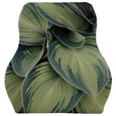 Closeup Photo Of Green Variegated Leaf Plants Car Seat Velour Cushion  by Pakrebo