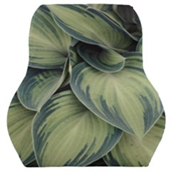 Closeup Photo Of Green Variegated Leaf Plants Car Seat Back Cushion  by Pakrebo