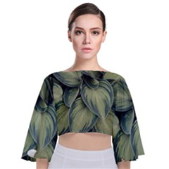 Closeup Photo Of Green Variegated Leaf Plants Tie Back Butterfly Sleeve Chiffon Top by Pakrebo