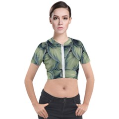 Closeup Photo Of Green Variegated Leaf Plants Short Sleeve Cropped Jacket by Pakrebo