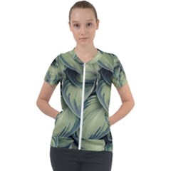 Closeup Photo Of Green Variegated Leaf Plants Short Sleeve Zip Up Jacket