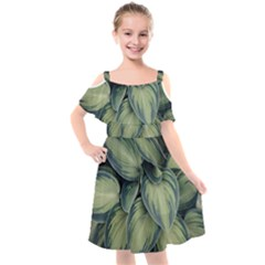 Closeup Photo Of Green Variegated Leaf Plants Kids  Cut Out Shoulders Chiffon Dress by Pakrebo