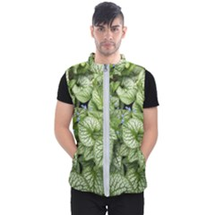 Green And White Leaf Plant Men s Puffer Vest