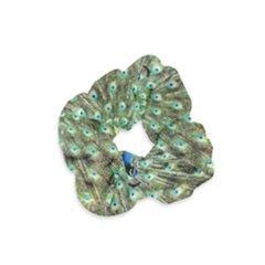 Blue And Green Peacock Velvet Scrunchie by Pakrebo