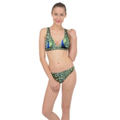 Blue And Green Peacock Classic Banded Bikini Set