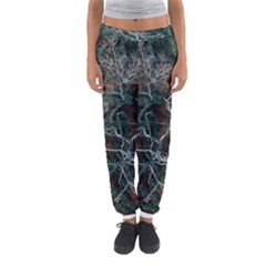 Aerial Photography Of Green Leafed Tree Women s Jogger Sweatpants