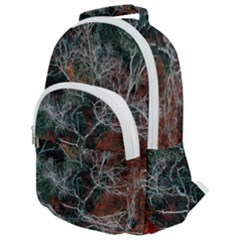 Aerial Photography Of Green Leafed Tree Rounded Multi Pocket Backpack