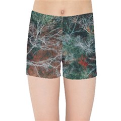 Aerial Photography Of Green Leafed Tree Kids  Sports Shorts