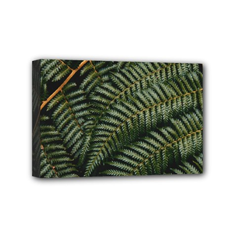Green Leaves Photo Mini Canvas 6  X 4  (stretched)