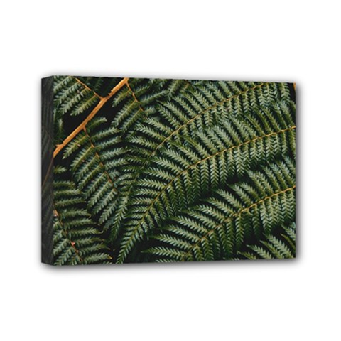Green Leaves Photo Mini Canvas 7  X 5  (stretched)