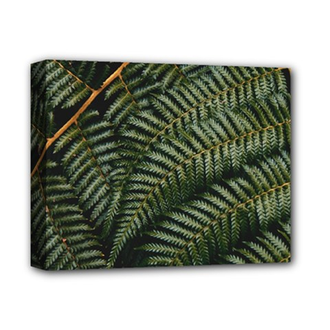 Green Leaves Photo Deluxe Canvas 14  X 11  (stretched)