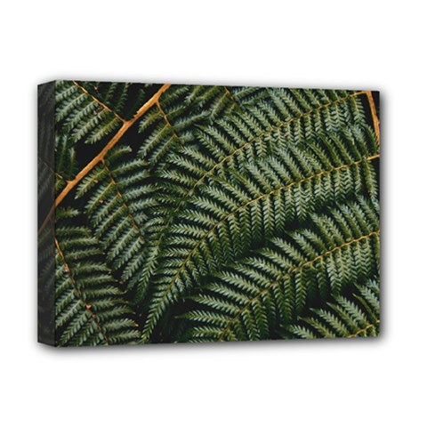 Green Leaves Photo Deluxe Canvas 16  X 12  (stretched)