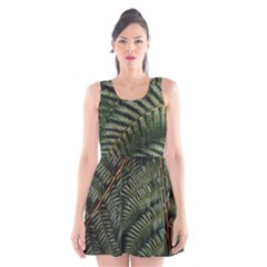 Green Leaves Photo Scoop Neck Skater Dress