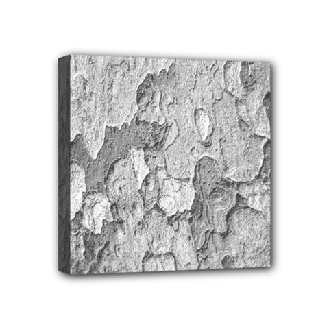 Nature Texture Print Mini Canvas 4  X 4  (stretched)
