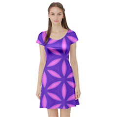 Purple Short Sleeve Skater Dress
