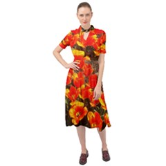 Orange Tulips At The Commons Keyhole Neckline Chiffon Dress by Riverwoman