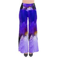 Zappwaits Flower So Vintage Palazzo Pants