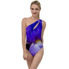 Zappwaits Flower To One Side Swimsuit