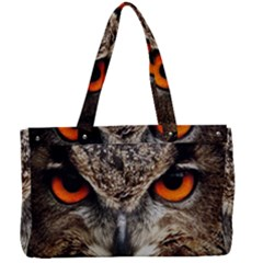 Owl Bird Eyes Eagle Owl Birds Canvas Work Bag by Wegoenart