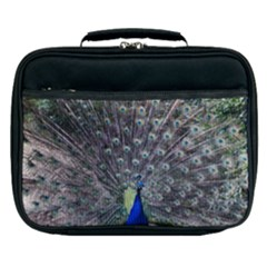 Peacock Bird Feather Plumage Green Lunch Bag
