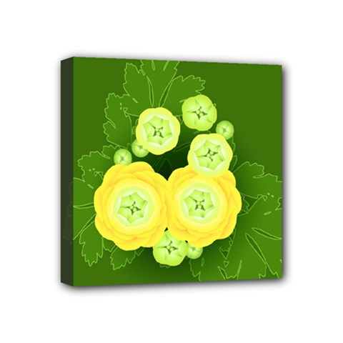 Buttercup Ranunculus Globe Flower Mini Canvas 4  X 4  (stretched) by Pakrebo
