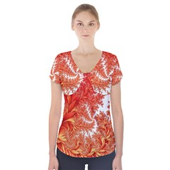 Flora Flowers Background Leaf Short Sleeve Front Detail Top