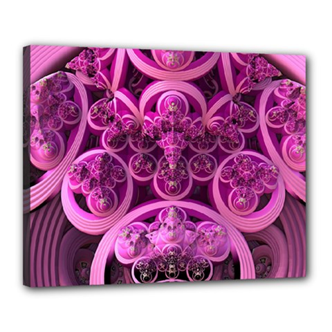 Fractal Math Geometry Visualization Pink Canvas 20  X 16  (stretched)