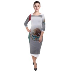 Flag Home Country National Symbol Quarter Sleeve Midi Velour Bodycon Dress
