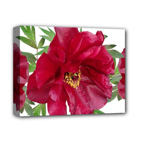Flowers Red Peony Arrangement Deluxe Canvas 14  X 11  (stretched)