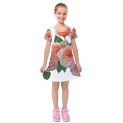 Roses Flowers Arrangement Perfume Kids  Short Sleeve Velvet Dress