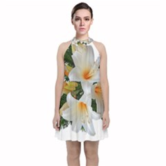 Lilies Belladonna White Flowers Velvet Halter Neckline Dress
