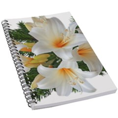 Lilies Belladonna White Flowers 5 5  X 8 5  Notebook