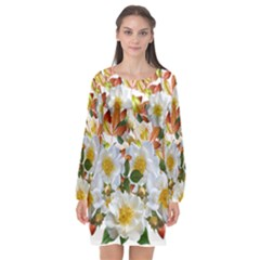 Flowers Roses Leaves Autumn Long Sleeve Chiffon Shift Dress