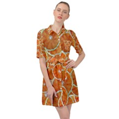Oranges Background Belted Shirt Dress by HermanTelo