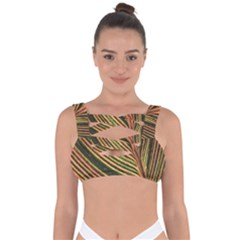 Leaf Patten Lines Colorful Plant Bandaged Up Bikini Top