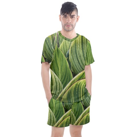 Leaves Striped Pattern Texture Men s Mesh Tee And Shorts Set by Simbadda