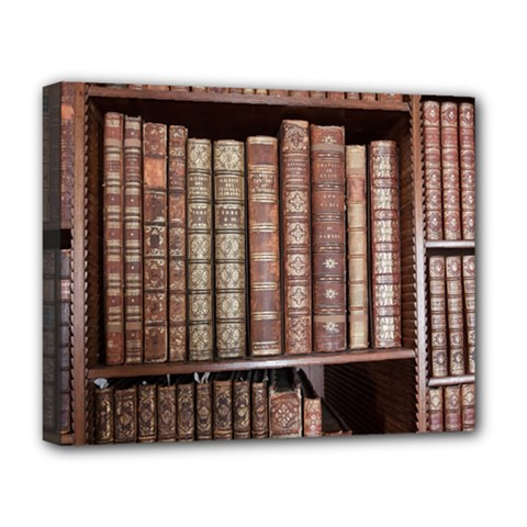 Library Books Knowledge Deluxe Canvas 20  X 16  (stretched)