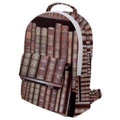 Library Books Knowledge Flap Pocket Backpack (small)