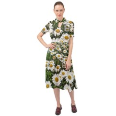 Columbus Commons Shasta Daisies Keyhole Neckline Chiffon Dress by Riverwoman