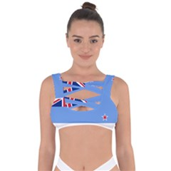 Proposed Flag Of The Ross Dependency Bandaged Up Bikini Top